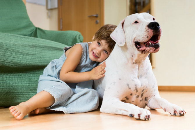 Pet therapy: cos'è e come funziona?